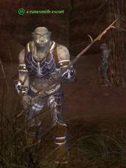 A runesmith escort