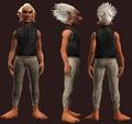 Animist's Hauberk of the Citadel (Equipped).png