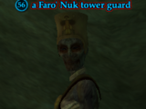 A Faro' Nuk tower guard