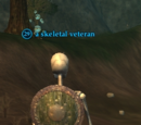 A skeletal veteran