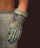 Spiritualist's Handguards of the Spiritcaller (Equipped)