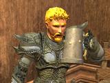 Guard Dravin (mob)