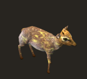 Tainted Deer Placed
