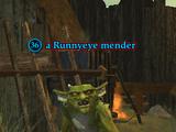 A Runnyeye mender (Enchanted Lands)