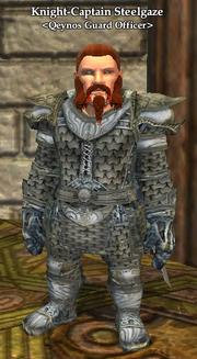 Knight-Captain Steelgaze