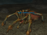 A blightfang spider