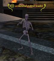 A skeletal patrol leader
