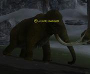 A woolly mammoth (Eastern Wastes)