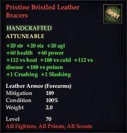 Pristine Bristled Leather Bracer