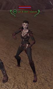 An Elder slayer