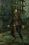 A Darkblade scout (ratonga)