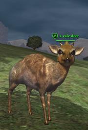 A vale deer