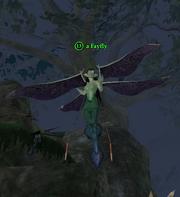 A Fayfly