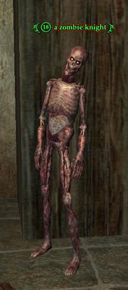 A zombie knight