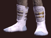 Elementalist's Shoes of the Citadel (Equipped)