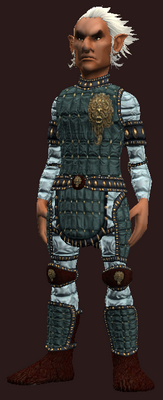 Exquisite woven (Armor Set) (Visible, Male)