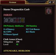 Storm Dragonskin Garb