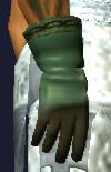 Animist's Gloves (equipped)