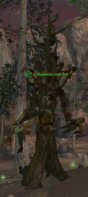 A Shadesire watcher