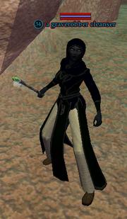 A graverobber cleanser
