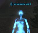 An untamed spirit