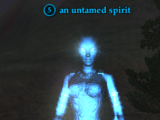 An untamed spirit