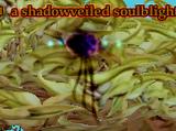 A shadowveiled soulblight