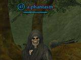 A phantasm