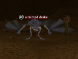 A tainted drake