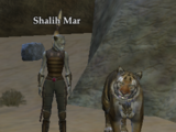 Shalih Mar (The Sinking Sands)