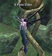 A Pixie Elder