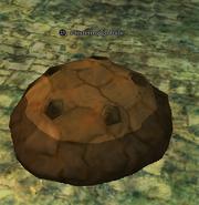 A festering globule