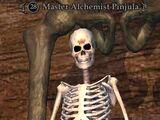 Master Alchemist Pinjula