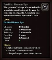 Petrified Human Eye