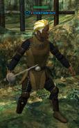 A Darkblade fury (half elf)