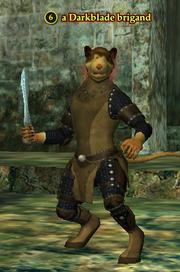 A Darkblade brigand (ratonga)