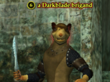 A Darkblade brigand
