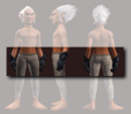 Archon's Gauntlets of the Citadel (Equipped).png