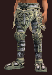 Dragoon's Legplates of the Weaponmaster (Equipped)