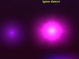 Ignus dancer