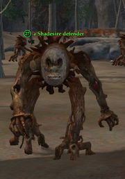 A Shadesire defender