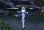 A vexed forest watcher