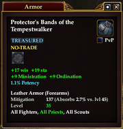 Protector's Bands of the Tempestwalker