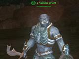 A Vallon grunt