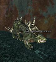 A frightened chokidai