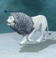 An icemane patriarch