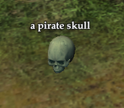 A pirate skull