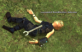 A wounded Baubbleshire defender.png