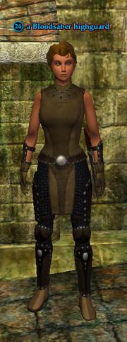 A Bloodsaber highguard (human)