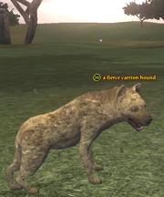 A fierce carrion hound